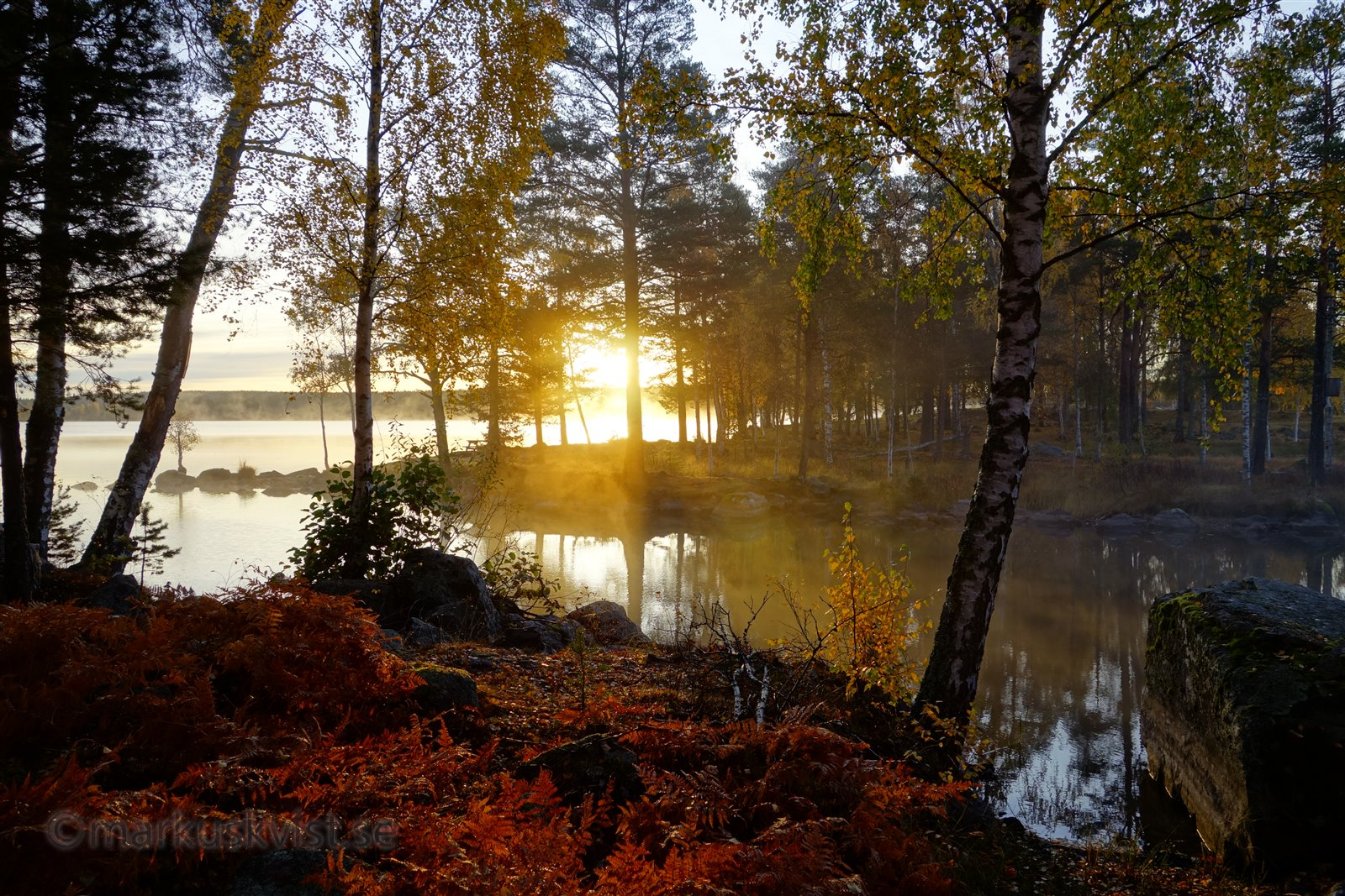 Image result for autumn in sweden